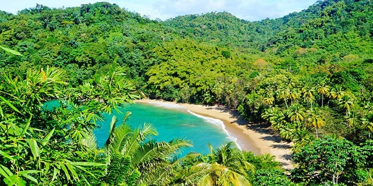 Cheap Flights To Tobago Brightsun Travel India