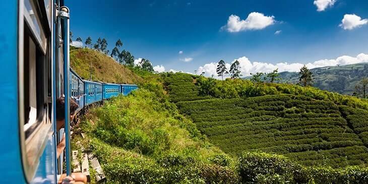 Cheap Flights To Colombo Brightsun Travel India