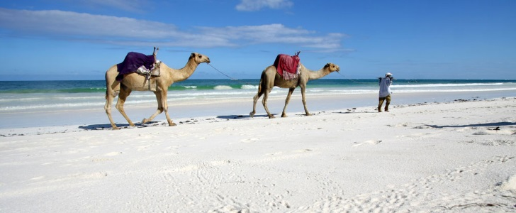 Cheap Flights To Mombasa Brightsun Travel